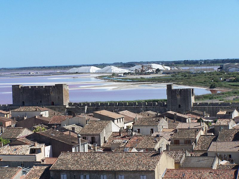 AiguesMortes Ideas for days out in Camargue Alpilles and